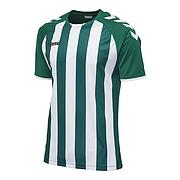 CORE STRIPED SS JERSEY (JUNIOR)